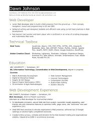 entry level resume template sle resume for an entry level it developer