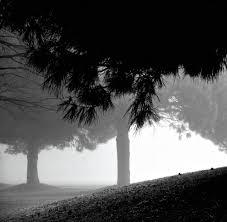 Shades Of Light Com by Photos U0026 Landscapes U2014 The Universe Of Jonathan Mosaic