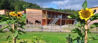 landesforsten rheinland pfalz walderlebniszentrum soonwald