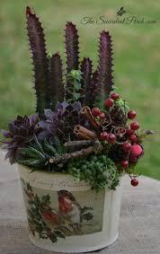 558 best succulent container arrangements images on pinterest