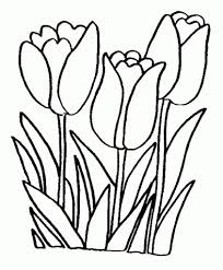 flower drawing for colouring flower page printable coloring sheets