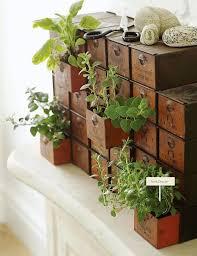 indoor herb gardens indoor herb garden ideas indoor herbs herbs garden and garden ideas