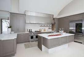 light grey kitchen cabinets cabinet houzz 15 inspirational light