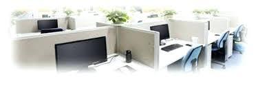 plantes d駱olluantes chambre plantes depolluantes chambre bureau plante verte depolluante pour