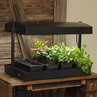 Indoor Garden Supplies - indoor gardening kits u0026 supplies gardener u0027s edge
