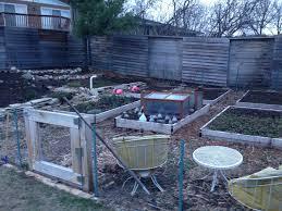 my crappy minneapolis gardening blog organic weed gardening in