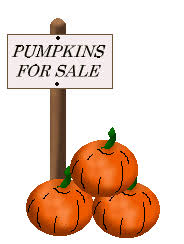 pumpkins for sale weekendswithwhitney pumpkin for sale