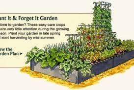 best vegetable garden layout gardening ideas