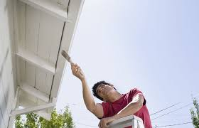 paint the house how much exterior paint to use spraying vs brushing