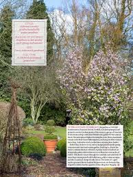 Scottish Rock Garden Forum Pressreader Country Living Uk 2017 02 01 Putting On A Show