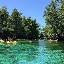 Three Sisters Springs Map River Ventures Crystal River Florida Rented A Kayak To See The