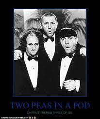 Two Peas In A Pod Meme - two peas in a pod cheezburger funny memes funny pictures