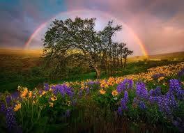 rainbow hills 2008 painted hills oregon marc adamus photography