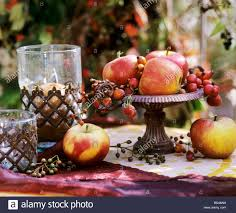 fruit in iron bowl apples ornamental apples hips stock