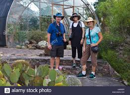 plants native to mexico visitors at the arboretum at el charco del ingenio houses plants