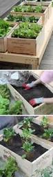 best 25 herb garden pallet ideas on pinterest pallet planters