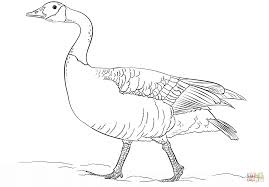 goose coloring page within eson me