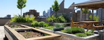 Roof Garden Design Ideas Outstanding Roof Garden Design Ideas Contemporary Best Idea Home