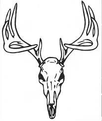 deer skull sle