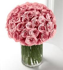 send roses send roses learn the meaning of roses colors roses pink