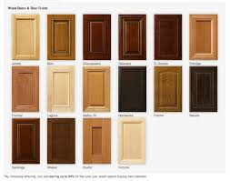 New Cabinet Doors Lowes Cabinet Refacing Lowes Stylish Doors Livezone Info In 14