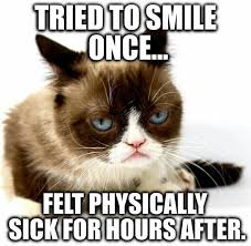 Grumpy Meme Face - resting bitch face grumpy cat pinterest grumpy cat cat