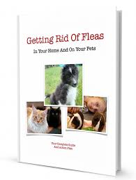 what to get a for s flea killer for pets and home