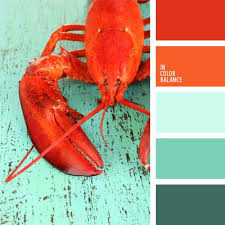 Good Color Pairs Best 25 Color Combinations Ideas Only On Pinterest Colour
