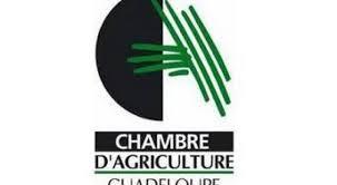 chambre d agriculture 08 trois listes engagées sur l élection partielle à la chambre d