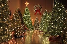 Christmas Lights Etc Christmas Lights Wallpapers Christmas Idol