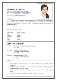 Sample Information Technology Resume by Sample Resume For Bachelor Of Science In Information Technology