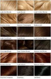 nicen easy color chart clairol perfect 10 by nice n easy hair color 005a medium ash