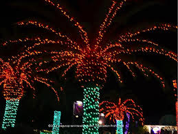 attraction of the week florida botanical gardens holiday lights