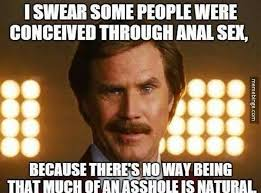 Anal Sex Meme - lonestar handy google