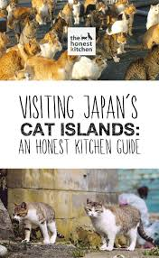 163 best japanese cat islands images on pinterest cats islands