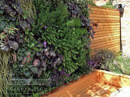 Urban Wall Garden - herb living wall design garden staket pinterest living walls