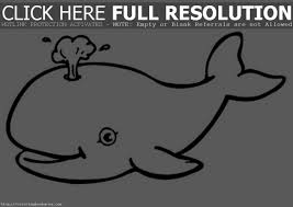 baby dolphin coloring pages clipart panda free clipart images