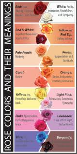color meanings chart flower color meanings the meaning of flowers the floral design
