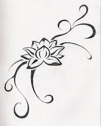 drawn lotus unique flower pencil and in color drawn lotus unique