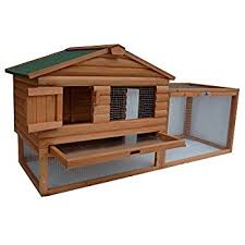 Rabbit Hutch Wood Amazon Com Advantek The Stilt House Rabbit Hutch Garden U0026 Outdoor