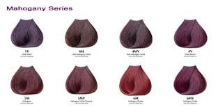 all the latest information mahogany hair color chart