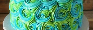 turquoise roses behance