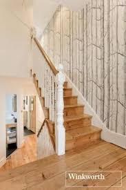 the 25 best birch tree wallpaper ideas on pinterest tree