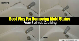 Best Way To Remove Mould From Bathroom Ceiling Best Way For Removing Mold Stains From Bathtub Caulking Home