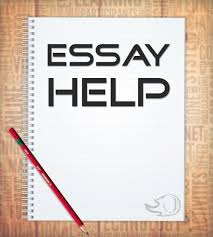 Best writer essay nmctoastmasters
