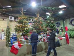 Christmas Decorations Shop Castle Hill by Fillingham Christmas Trees U2013 Quality Christmas Trees Grown In