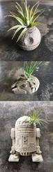 unique indoor planters 25 unique concrete planters ideas on pinterest diy cement