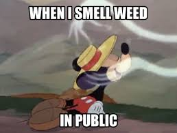 Mickey Mouse Meme - mickey smell weed in public marijuana meme