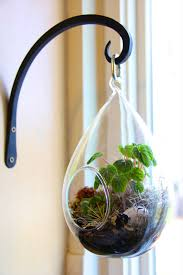 creating a diy hanging terrarium is so easy and the result is