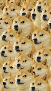 Top Doge Memes - doge meme wallpaper modafinilsale